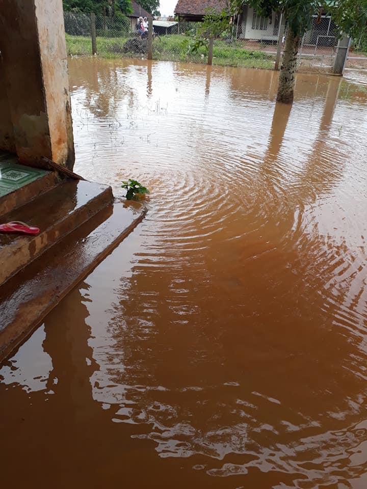 Trường mầm non hễ mưa là ngập, bà hiệu trưởng thì ra sức lạmthu