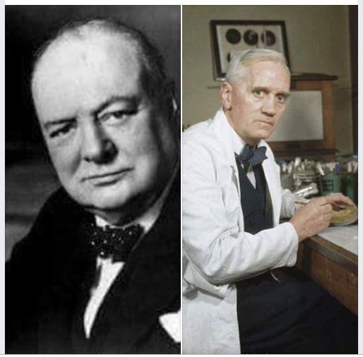 Chuyện về bác sỹ lừng danh Alexander Fleming và thủ tướng Anh WinstonChurchill